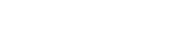 DDN-logo_white